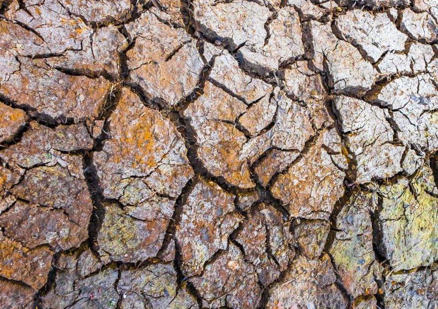 La superficie de la Tierra se eleva como resultado de una sequía extrema